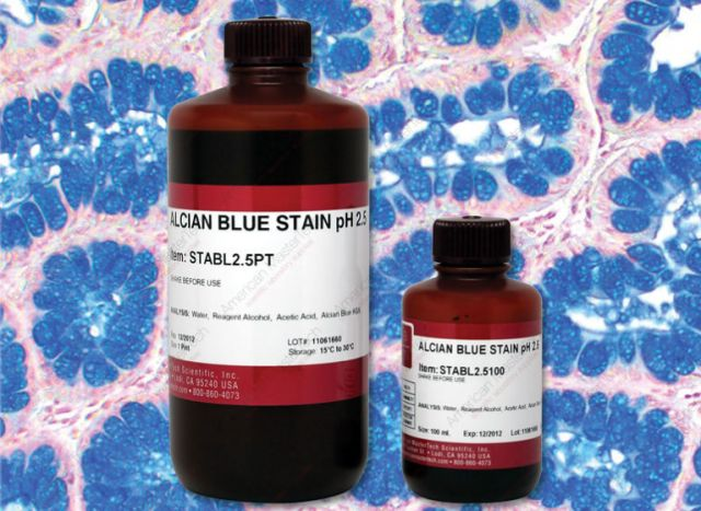 Alcian Blue Stain pH 2.5