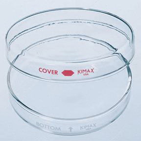 Kimble Kimax* Petri Dishes Set, Dia. X H, 100 x 20mm